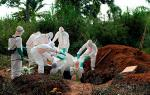 ebola_1_tmb.jpg
